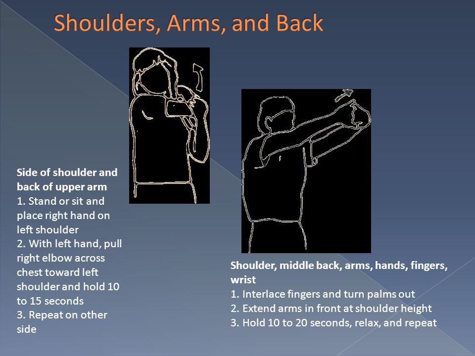 Shoulders, Arms, and Back