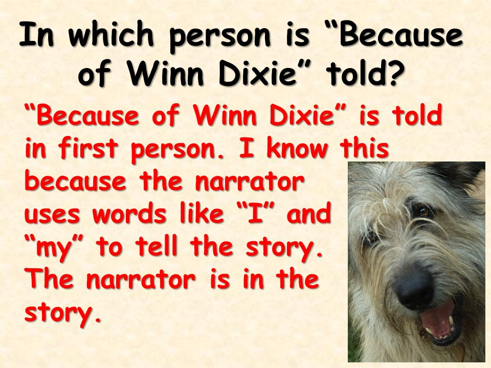 In which person is Because of Winn Dixie told