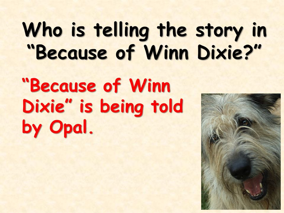 Who is telling the story in Because of Winn Dixie