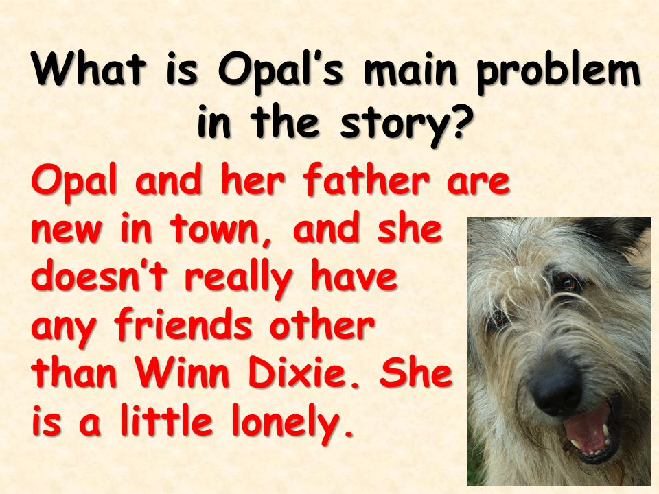 What is Opal's main problem in the story