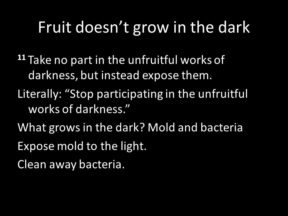 Fruit doesn't grow in the dark
