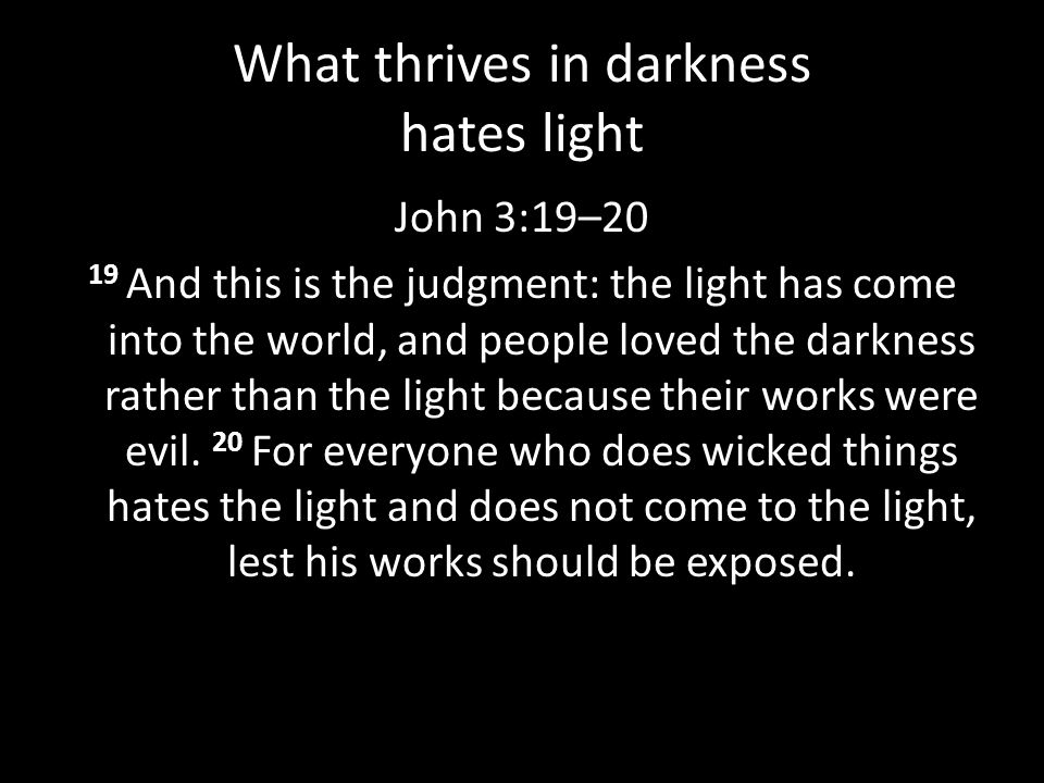 What thrives in darkness hates light