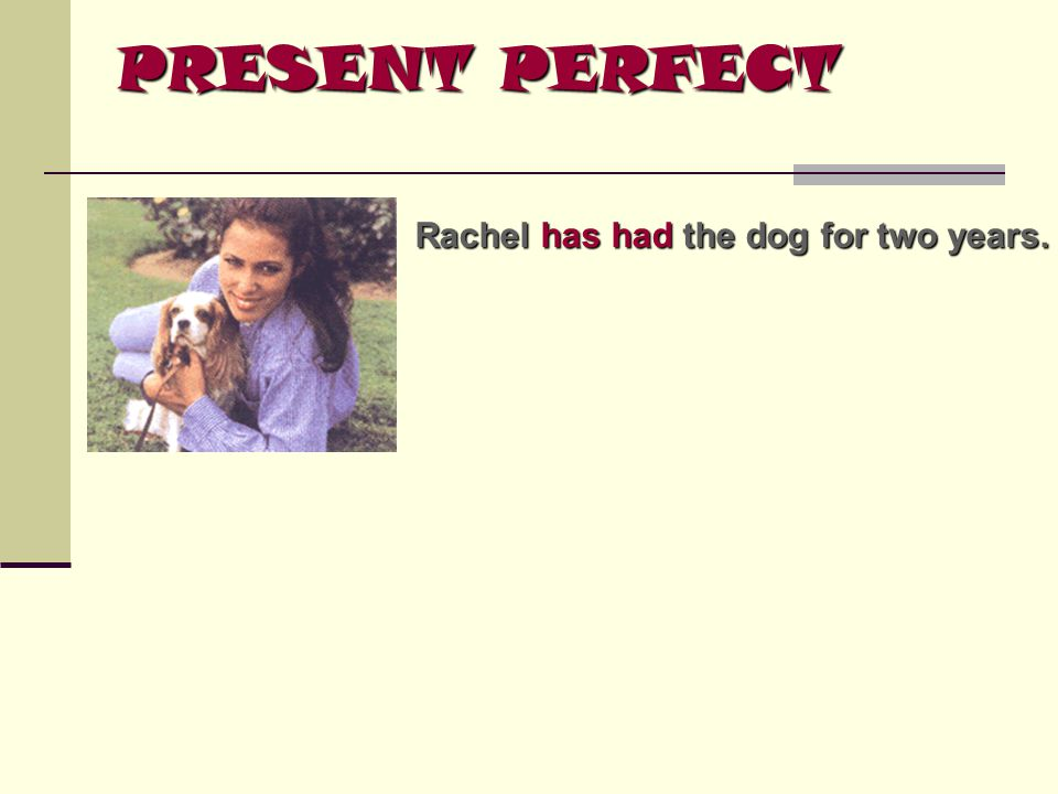 PRESENT PERFECT Rachel has had the dog for two years.