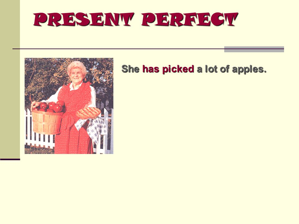 PRESENT PERFECT She has picked a lot of apples.