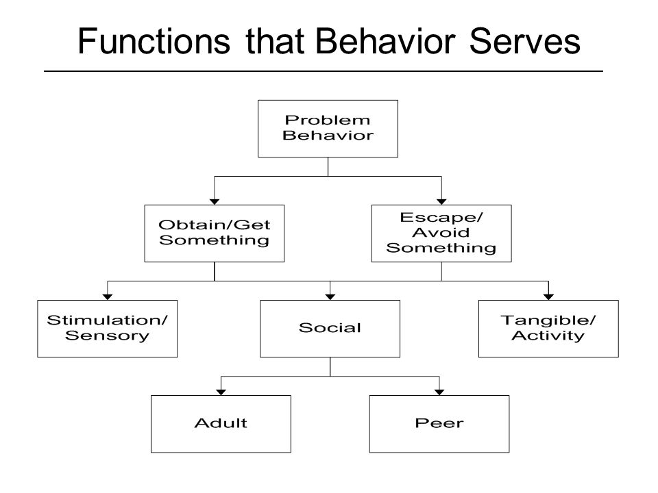 Functions that Behavior Serves