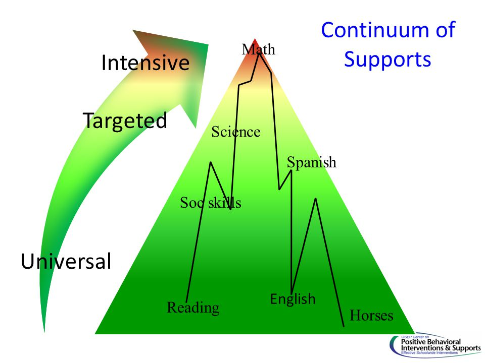 Continuum of Supports Intensive Targeted Universal Math Science