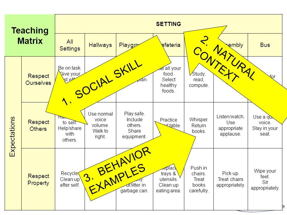 2. NATURAL CONTEXT 1. SOCIAL SKILL 3. BEHAVIOR EXAMPLES