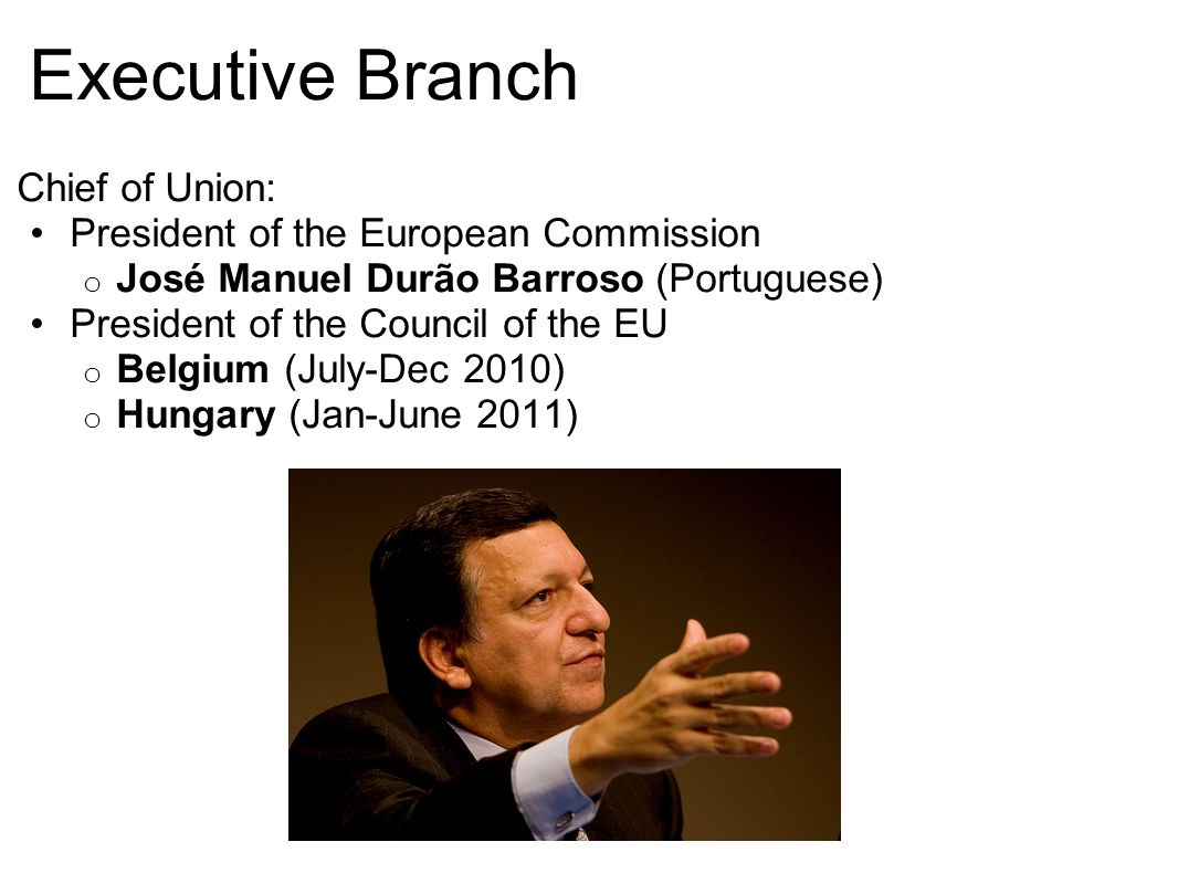 Executive Branch Chief of Union: President of the European Commission