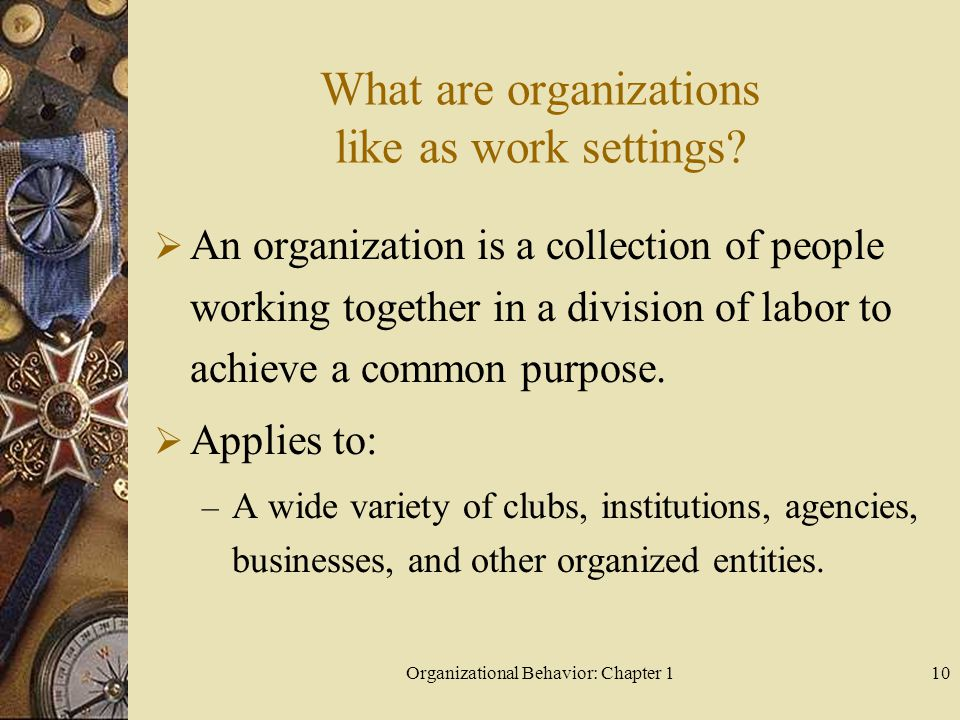 What are organizations like as work settings