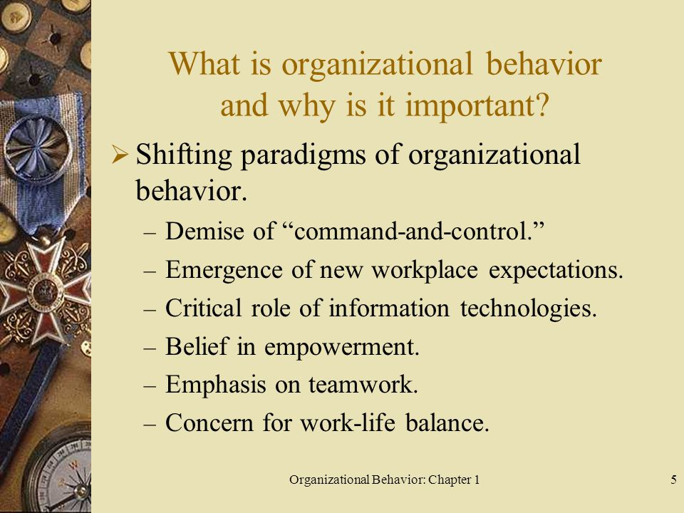 What is organizational behavior and why is it important