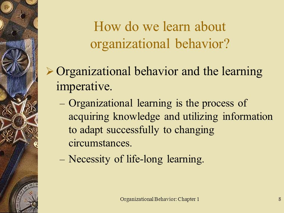 How do we learn about organizational behavior