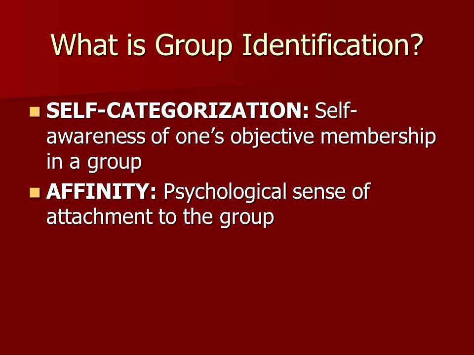 What is Group Identification