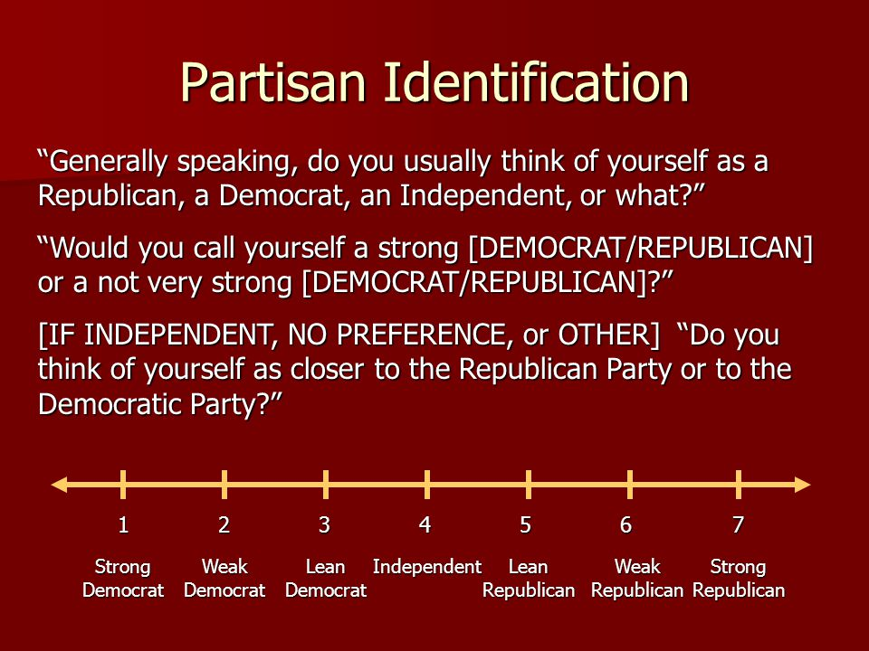 Partisan Identification
