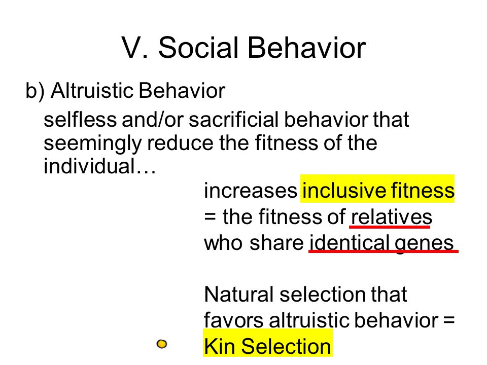 V. Social Behavior b) Altruistic Behavior