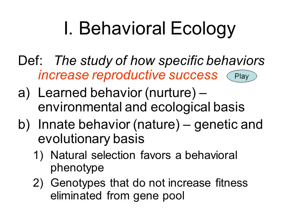 I. Behavioral Ecology Def: The study of how specific behaviors increase reproductive success.