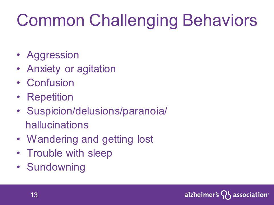 Common Challenging Behaviors