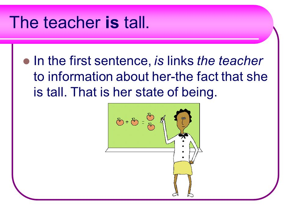 The teacher is tall.