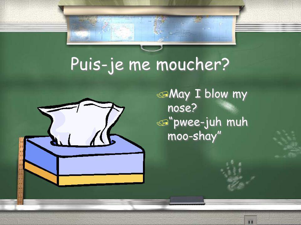 Puis-je me moucher May I blow my nose pwee-juh muh moo-shay