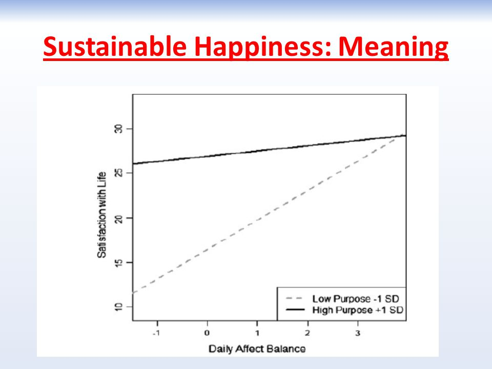 Sustainable Happiness: Meaning
