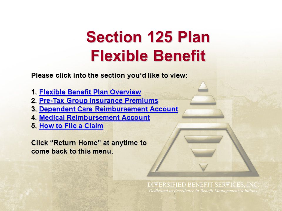 Section 125 Plan Flexible Benefit