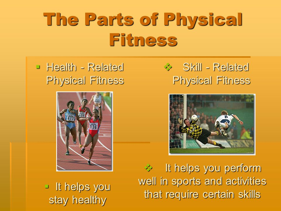 The Parts of Physical Fitness