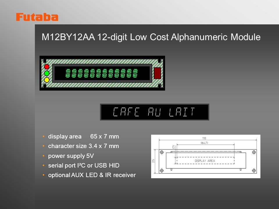 M12BY12AA 12-digit Low Cost Alphanumeric Module