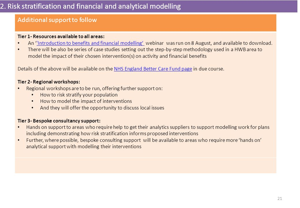 2. Risk stratification and financial and analytical modelling