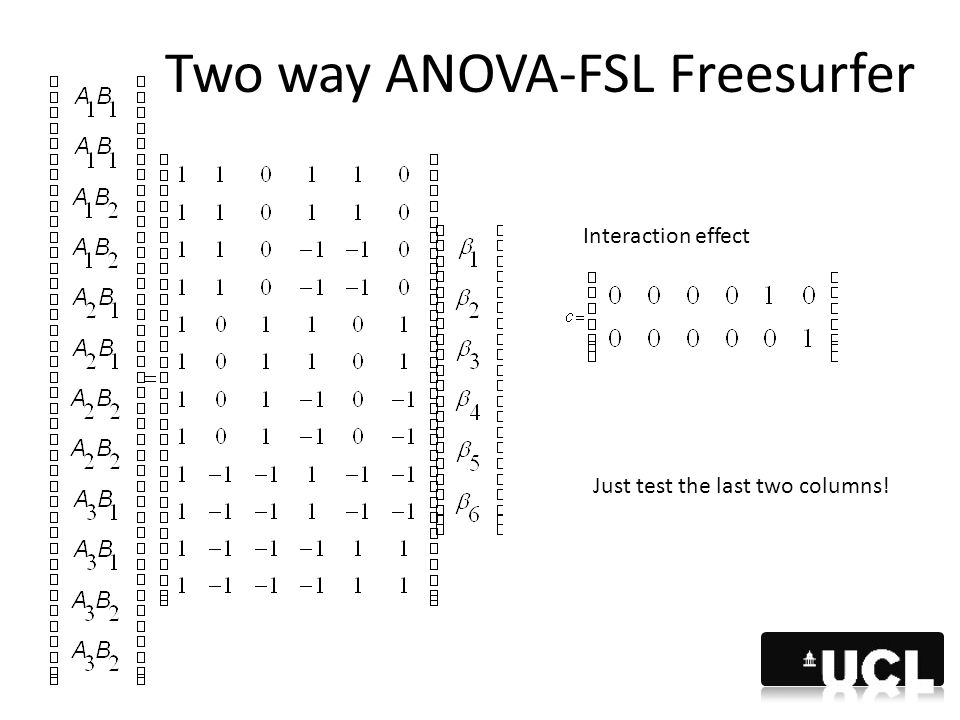 Two way ANOVA-FSL Freesurfer