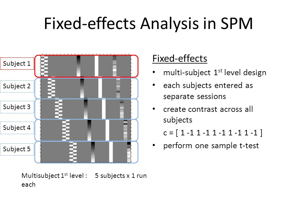 Fixed-effects Analysis in SPM