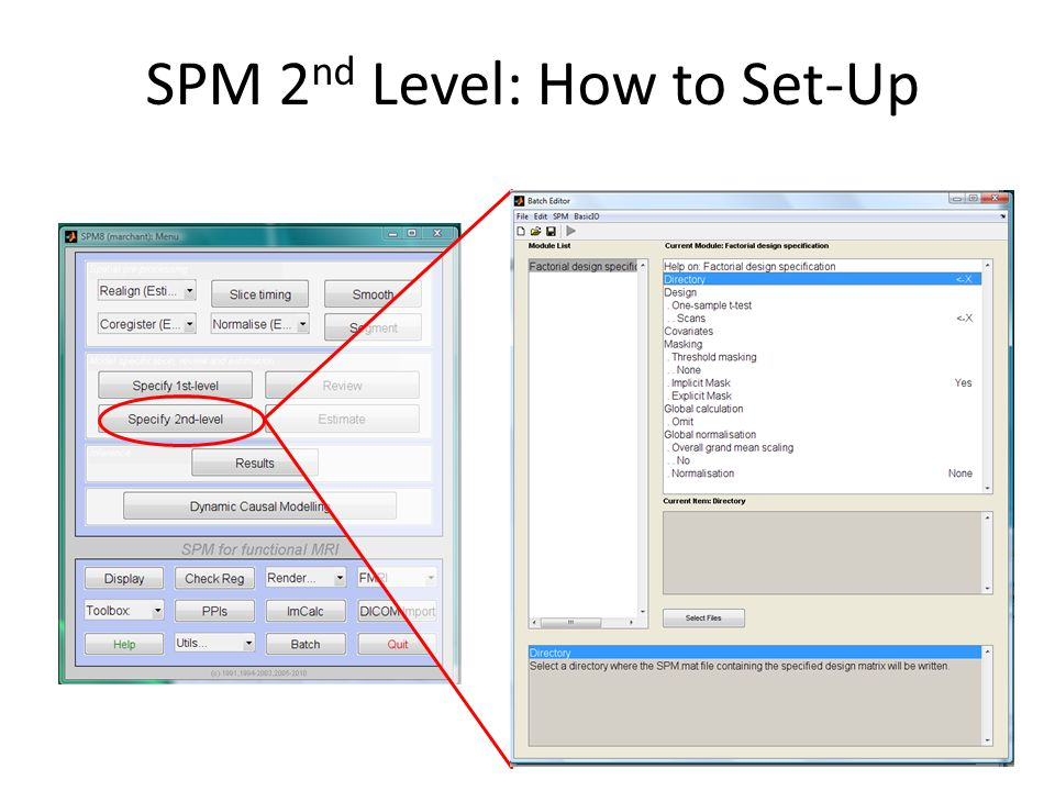 SPM 2nd Level: How to Set-Up
