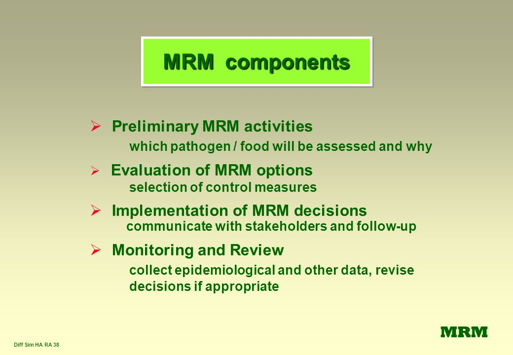 MRM components Preliminary MRM activities