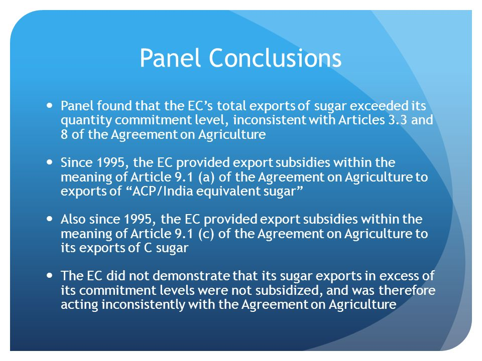 Panel Conclusions