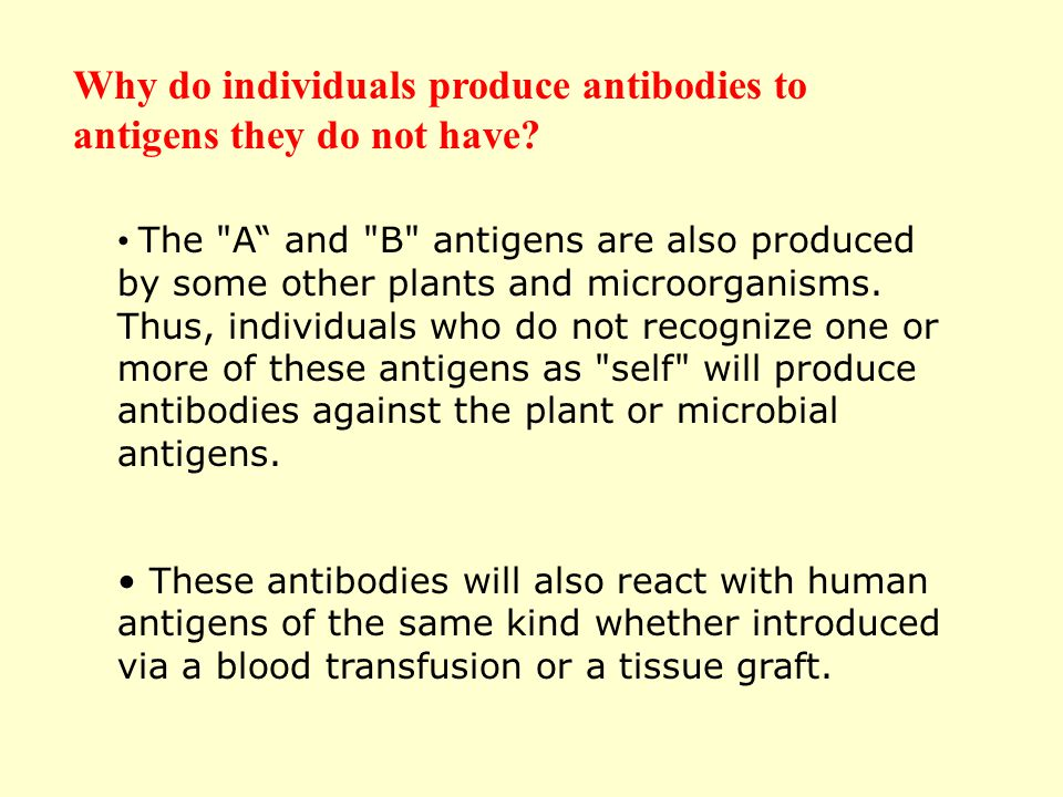 Why do individuals produce antibodies to antigens they do not have