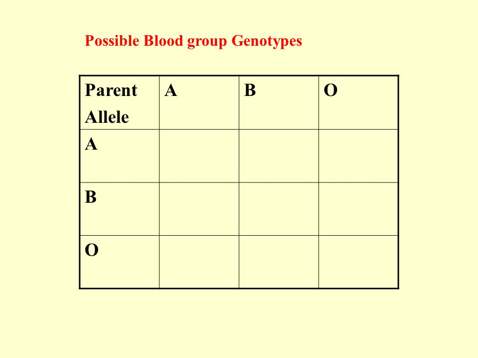 Possible Blood group Genotypes