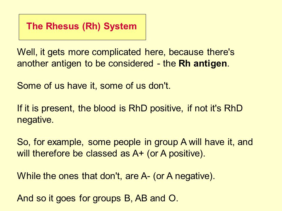 The Rhesus (Rh) System