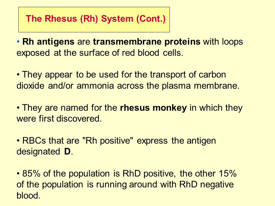 The Rhesus (Rh) System (Cont.)