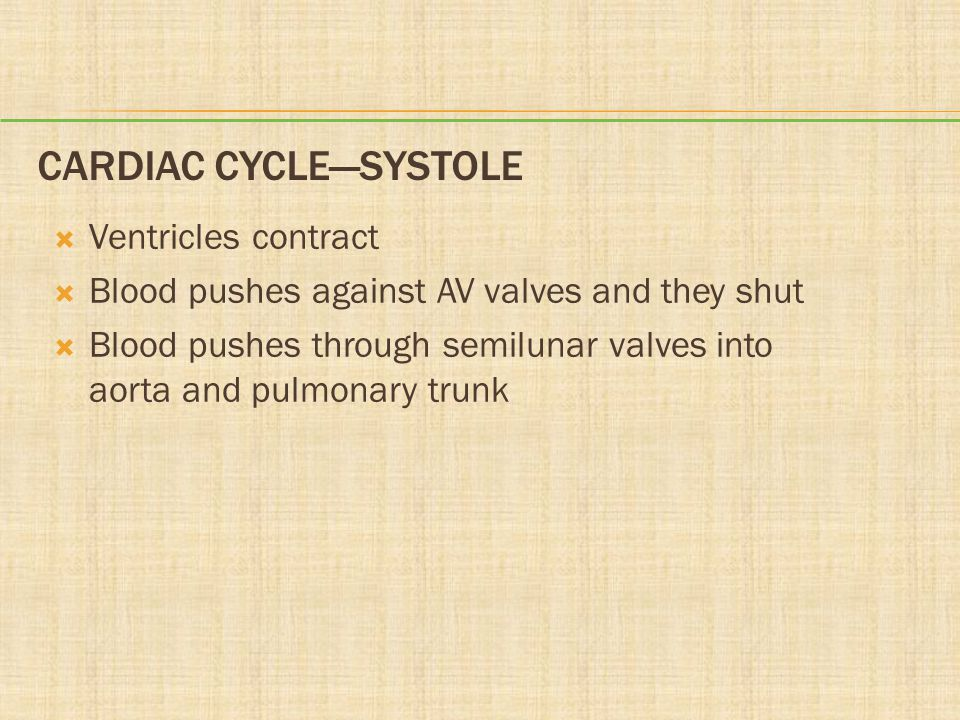 Cardiac Cycle—Systole