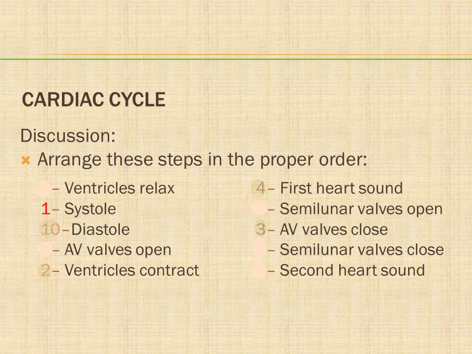 Cardiac Cycle Discussion: Arrange these steps in the proper order: