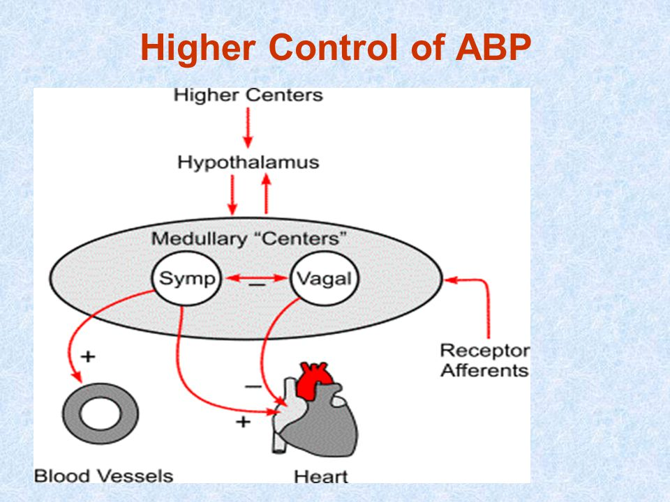 Higher Control of ABP