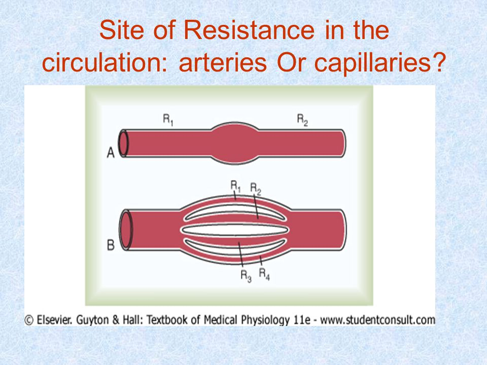 Site of Resistance in the circulation: arteries Or capillaries