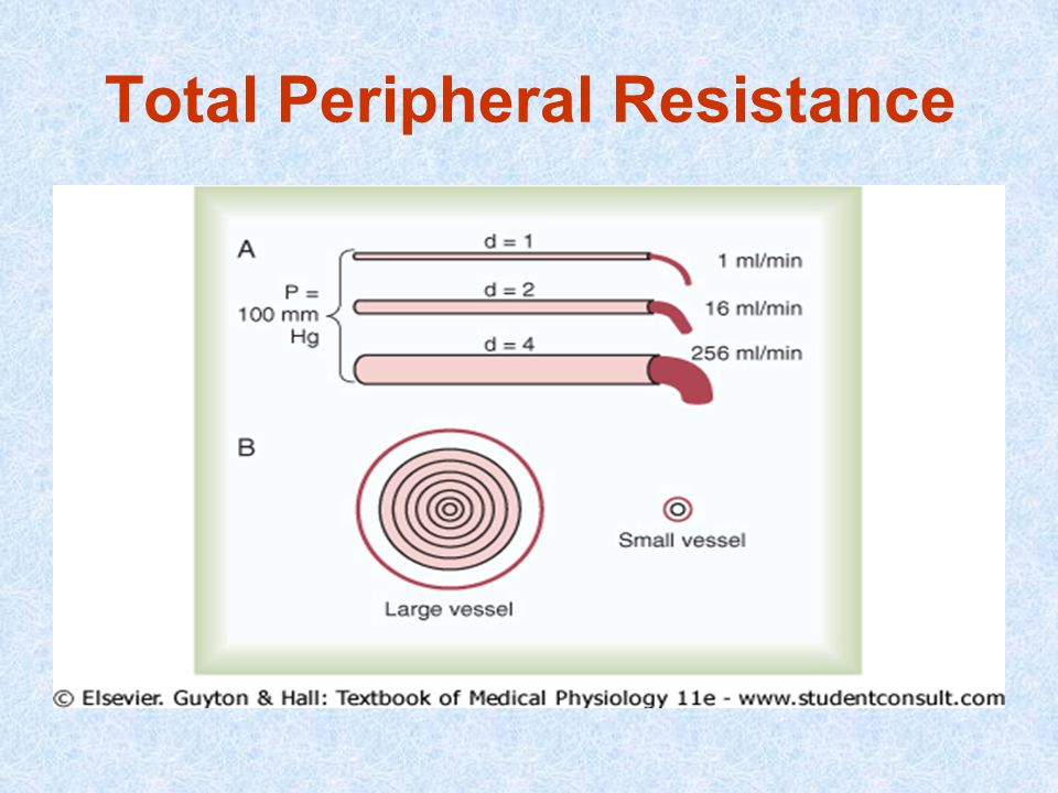 Total Peripheral Resistance