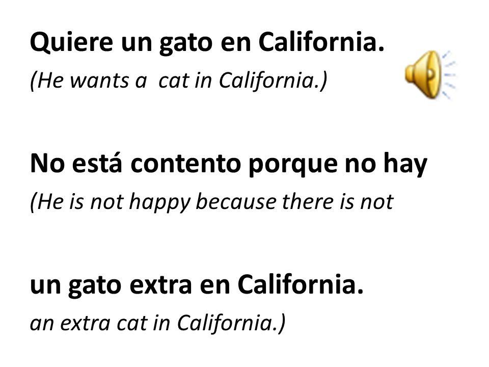 Quiere un gato en California.