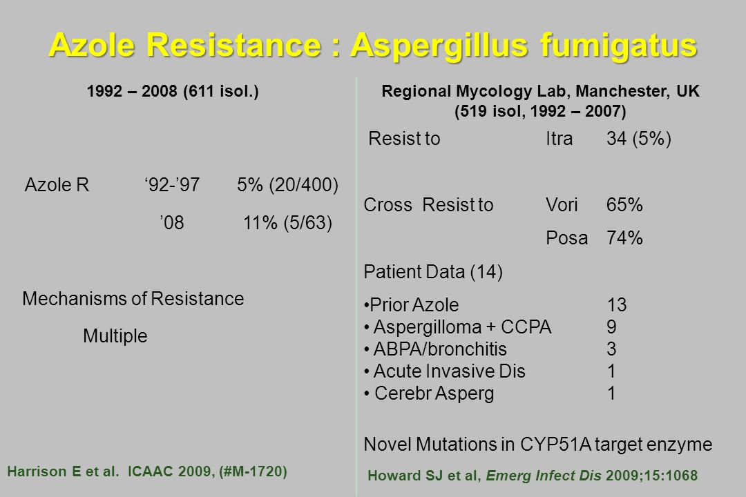 Azole Resistance : Aspergillus fumigatus