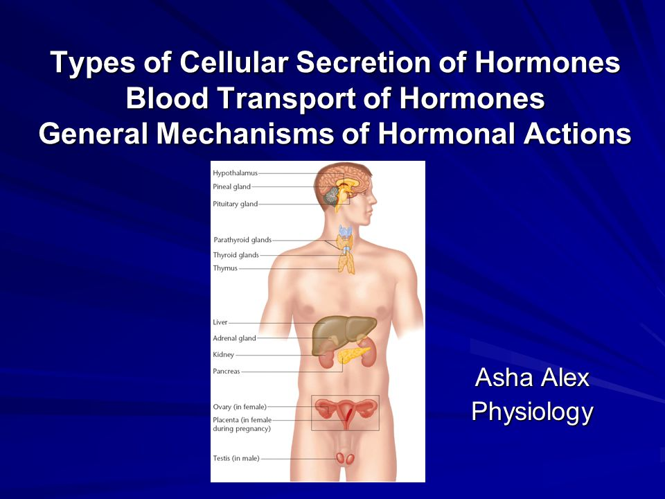 Types of Cellular Secretion of Hormones Blood Transport of Hormones General Mechanisms of Hormonal Actions