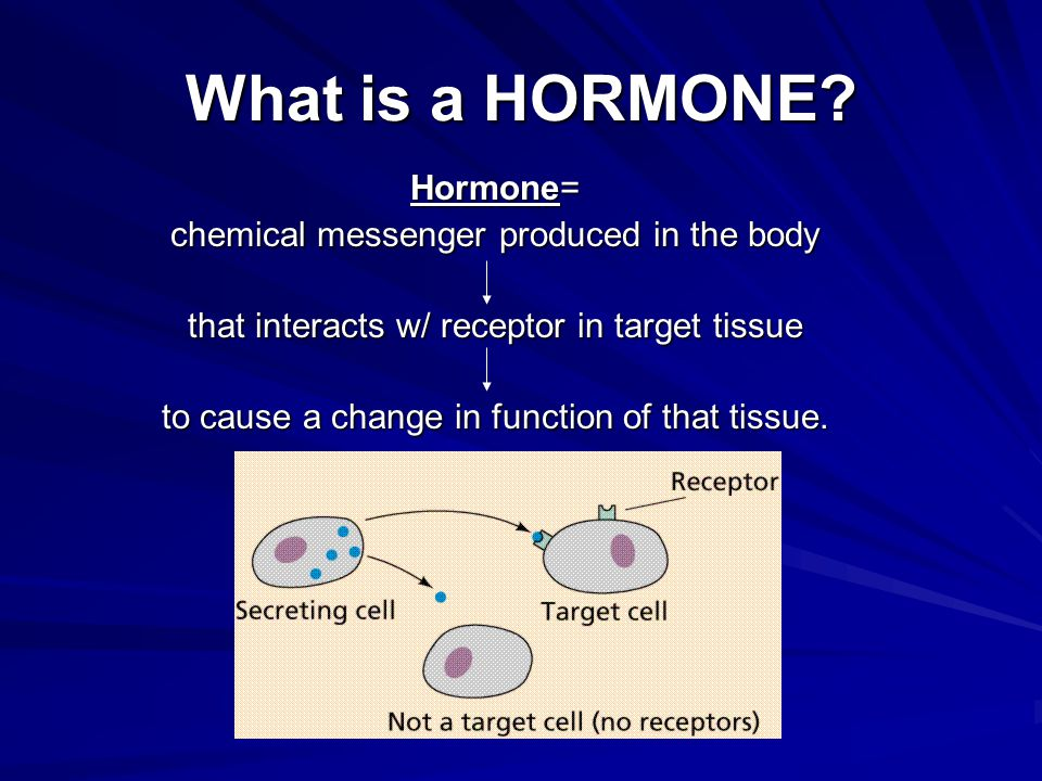 What is a HORMONE Hormone= chemical messenger produced in the body