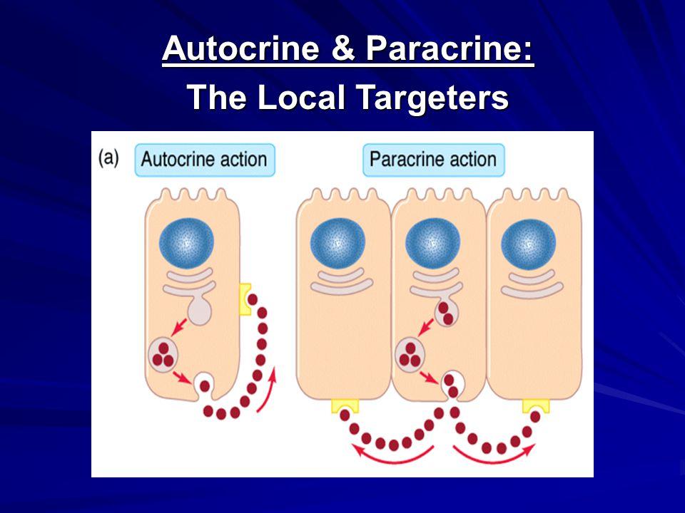 Autocrine & Paracrine: