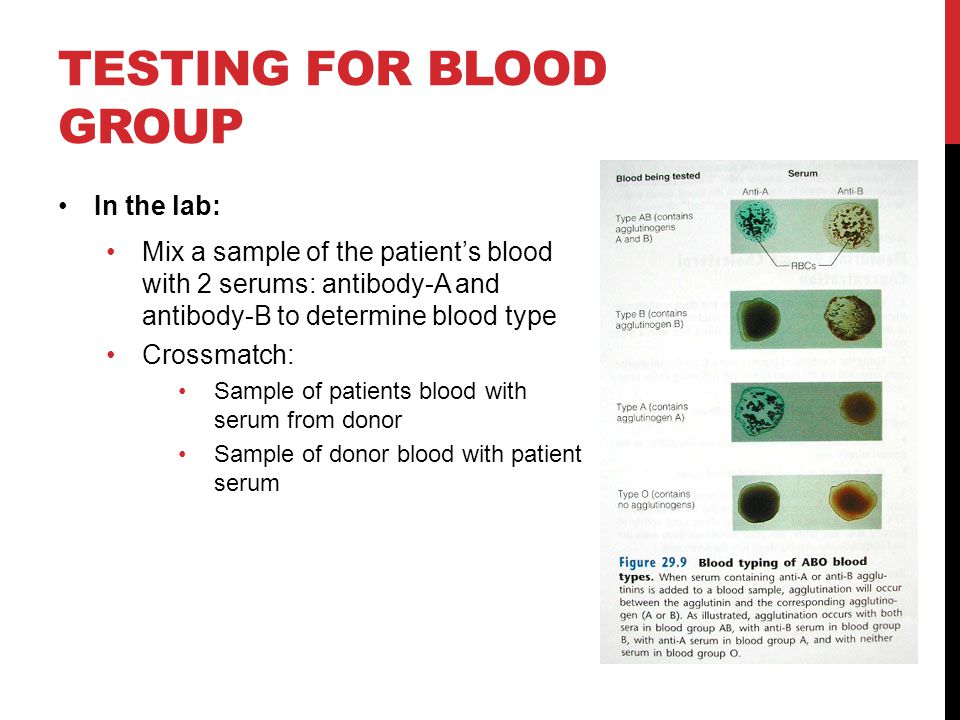 Testing for blood group