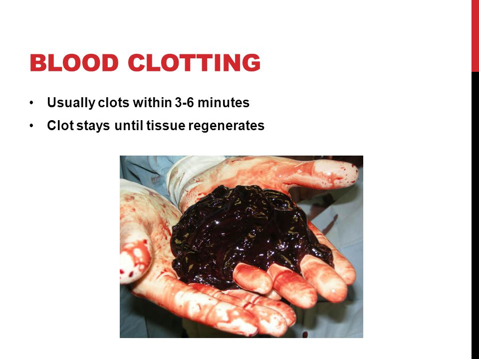 Blood clotting Usually clots within 3-6 minutes