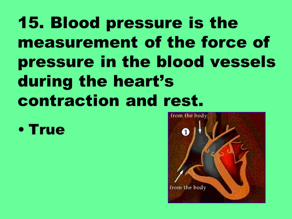 15. Blood pressure is the measurement of the force of pressure in the blood vessels during the heart's contraction and rest.