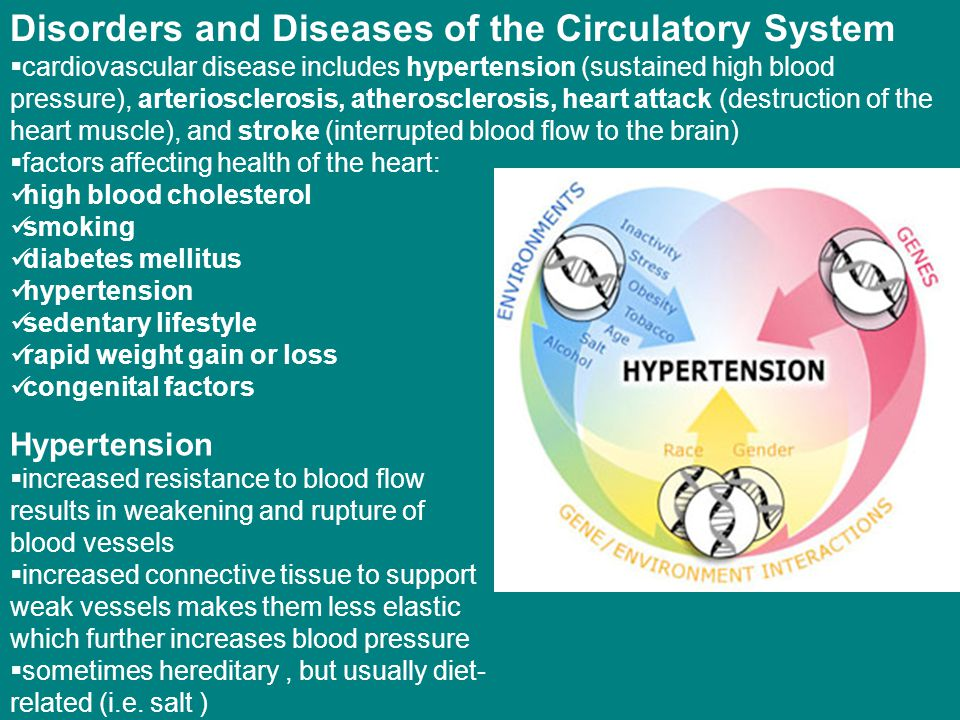 Disorders and Diseases of the Circulatory System